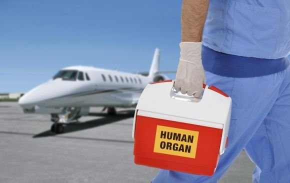 Organ transport by air ambulance or ambulance helicopter